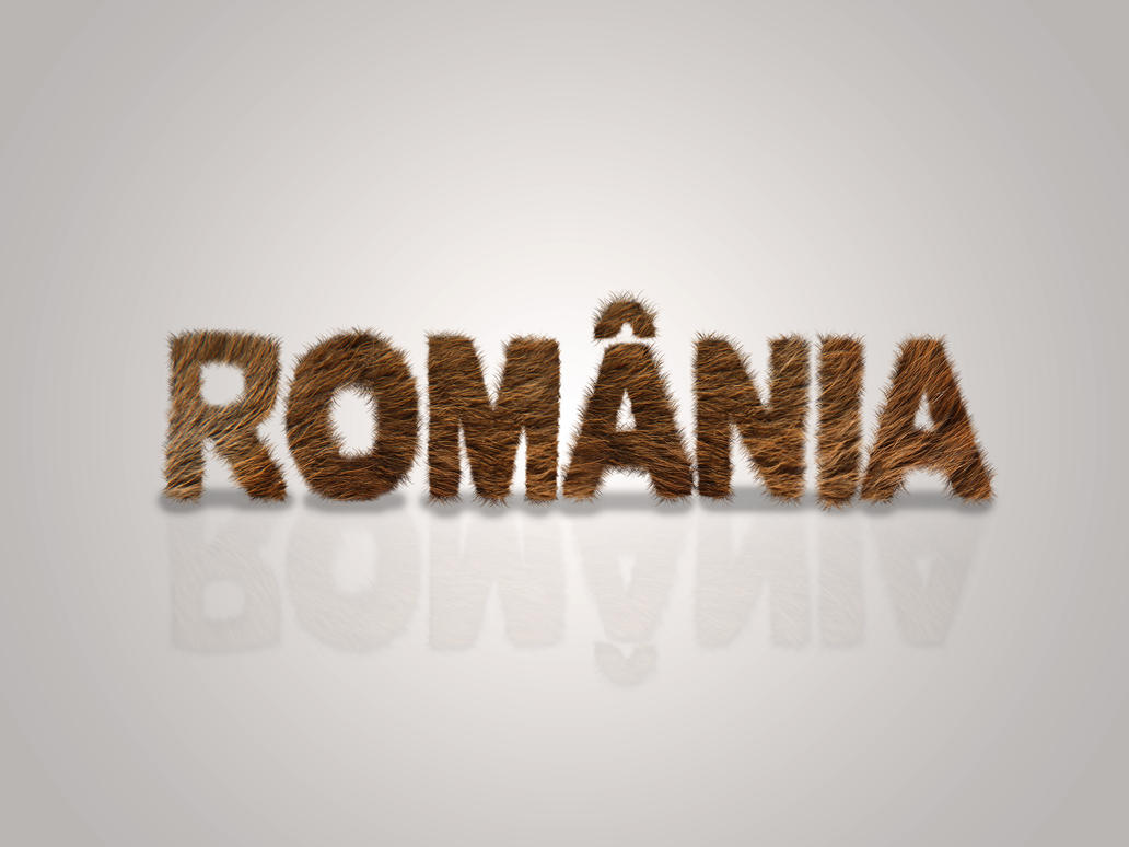 Romania - Bear fur typography wallpaper by Zaigwast