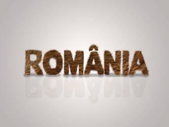 Romania - Bear fur typography wallpaper