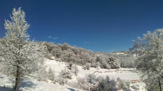 Winter Wonderland by lastwinterleaf