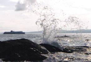 Coho splash by falcona