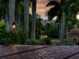 Tropical Street by TheCrossdresser