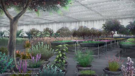 :CM: Alien Vege Field with Walls