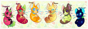 Fruity Catterwaul Adopts (4/6 OPEN)