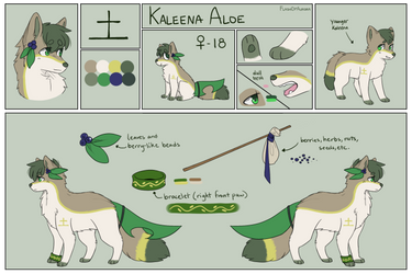 Reference Sheet: Kaleena Aloe by FlashOfAurora