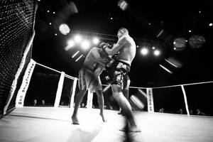 MMA 2 by henster311