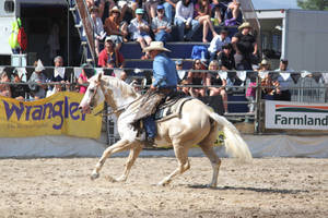 Taupo Rodeo 17 by Sooty-Bunnie