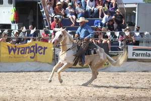Taupo Rodeo 19 by Sooty-Bunnie