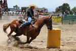 Taupo Rodeo 187