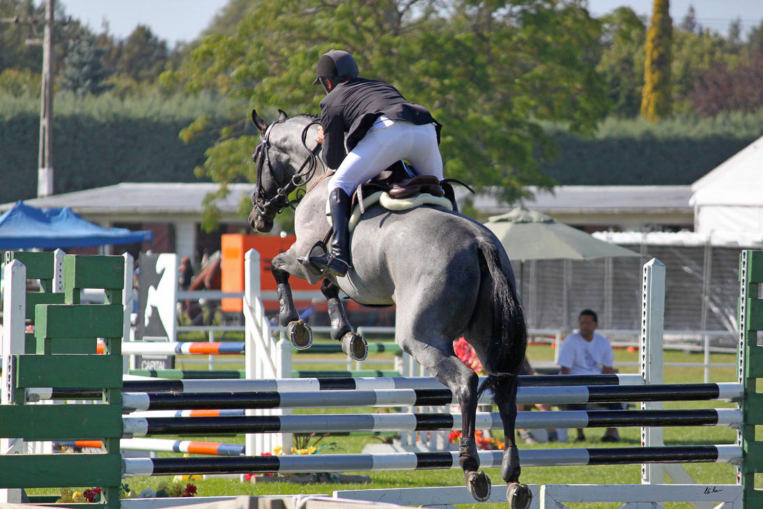 Show JUmping 4 by Sooty-Bunnie