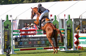 Show Jumping 13 by Sooty-Bunnie