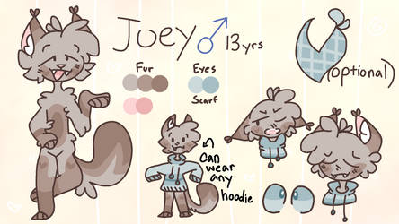 joey reference sheet | 2020