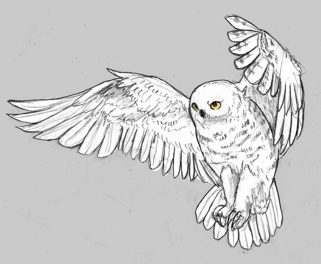 snowy owl by angiemyst snowy owl by angiemyst
