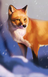 Fox in Snow by AngieMyst