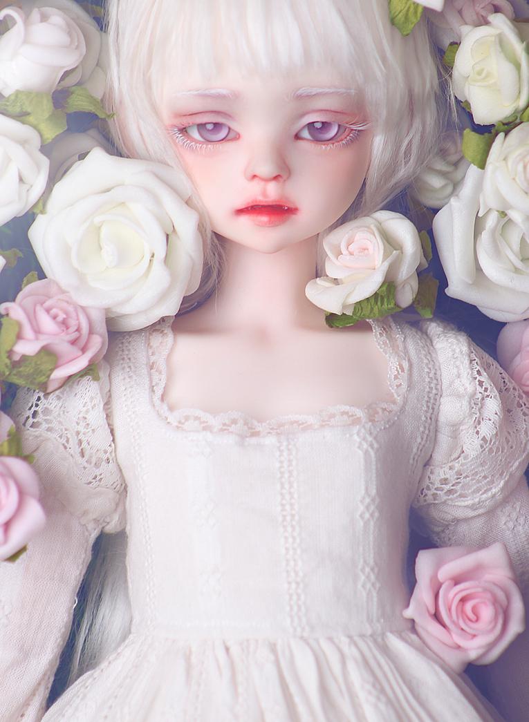 Rosa das rosas by Szklanooka