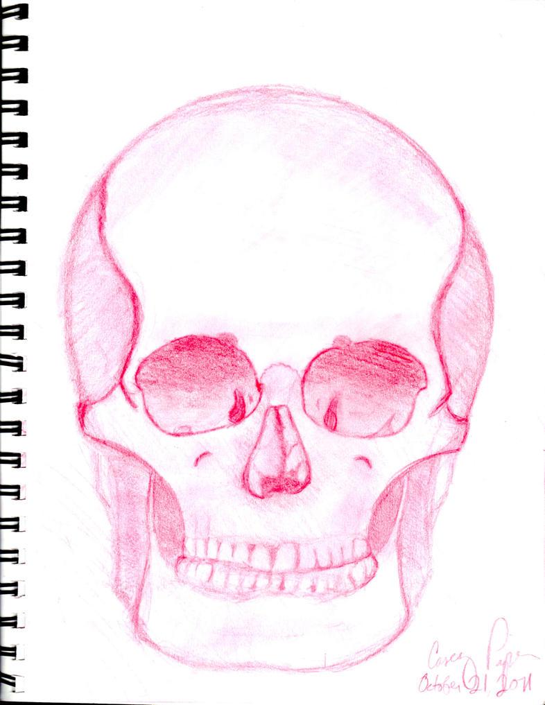 Skull by Jokermagic