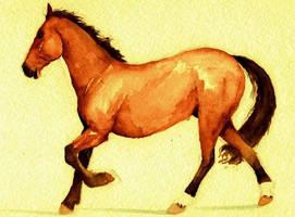 Water Horse by AnnieHyena