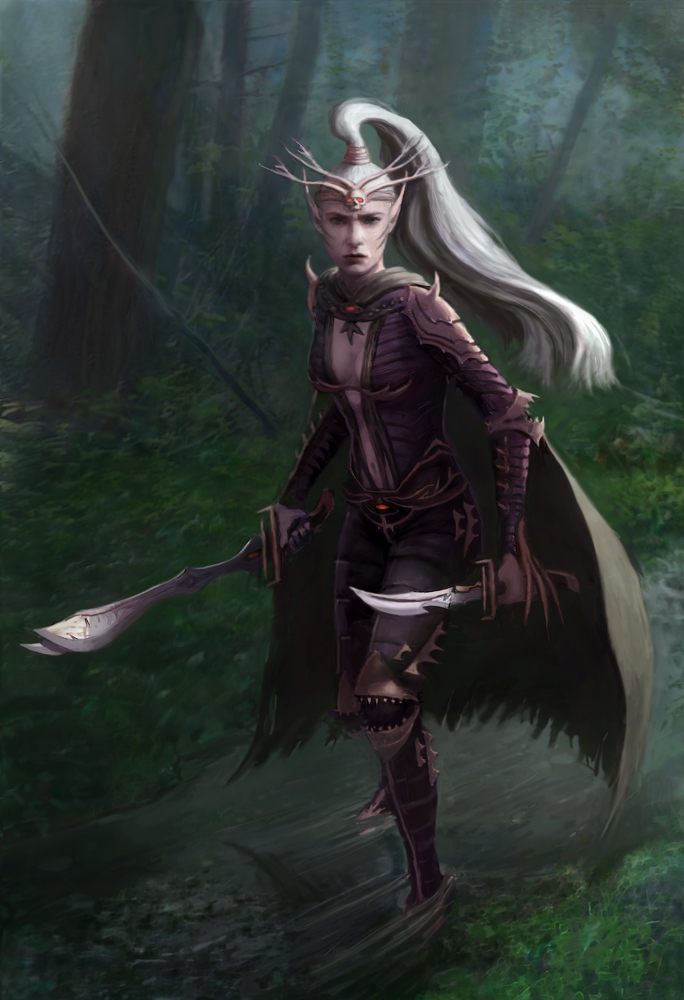 Assassin Elf