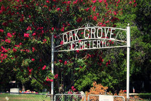 Oak Grove Cemetery by PhillyPuddy