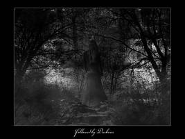 Followed by Darkness by anachron