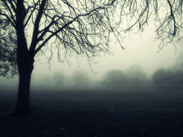Morning Fog by MarijaBerjoza