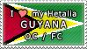 APH I love my Guyana OC Stamp by megumimaruidesu