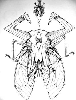 Skull ep cover idea.