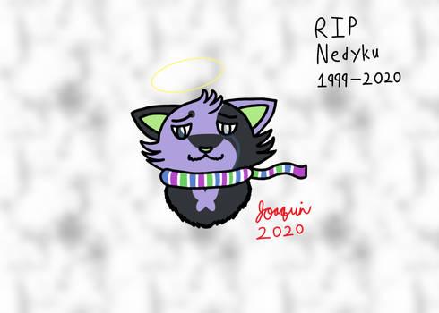 RIP Nedyku