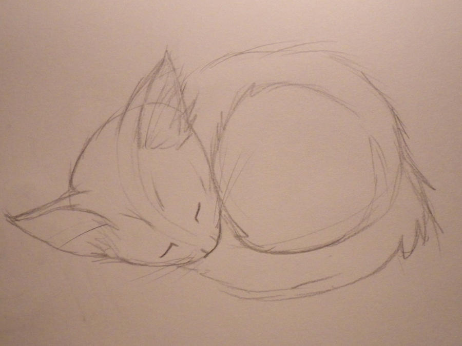 Sleeping Kitten by Bwabbit