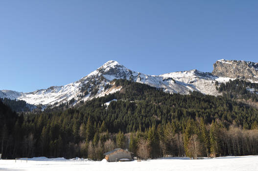 French Alps 2
