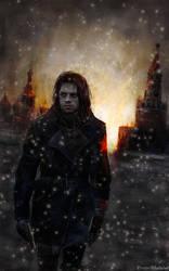 Le Soldat de l'Hiver (Sebastian Stan)