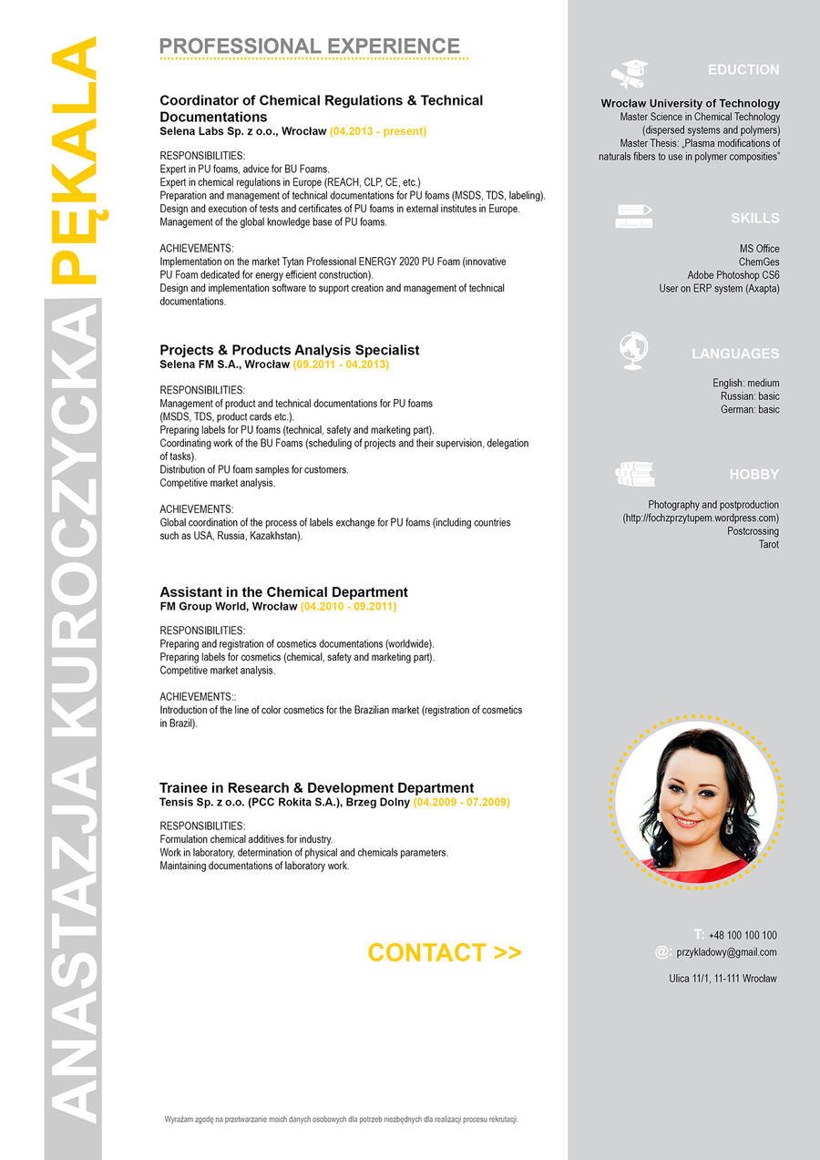 creative cv for master science by anakurpek on deviantart