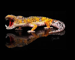 Geckopotamus by GalenValle