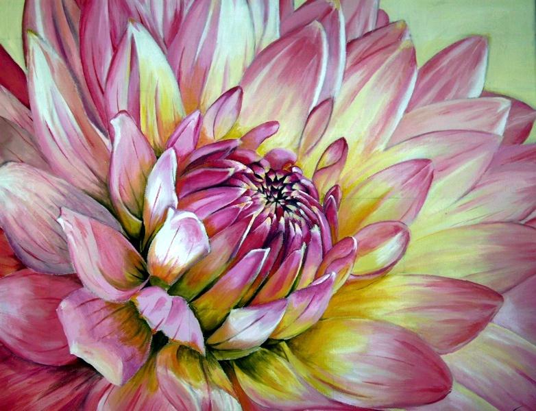 Pink Dahlia by B-Keks
