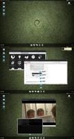 Debian - 20081030