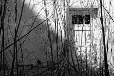 Forgotten Door by Drake-UK