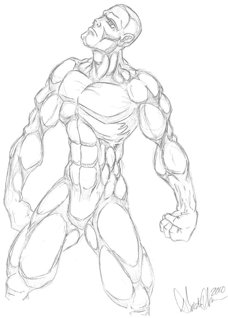 my comic anatomy by d olson on deviantart
