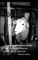 Auschwitz by lucidepsilocybin