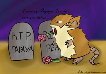 RIP Papaya by PokeChrys