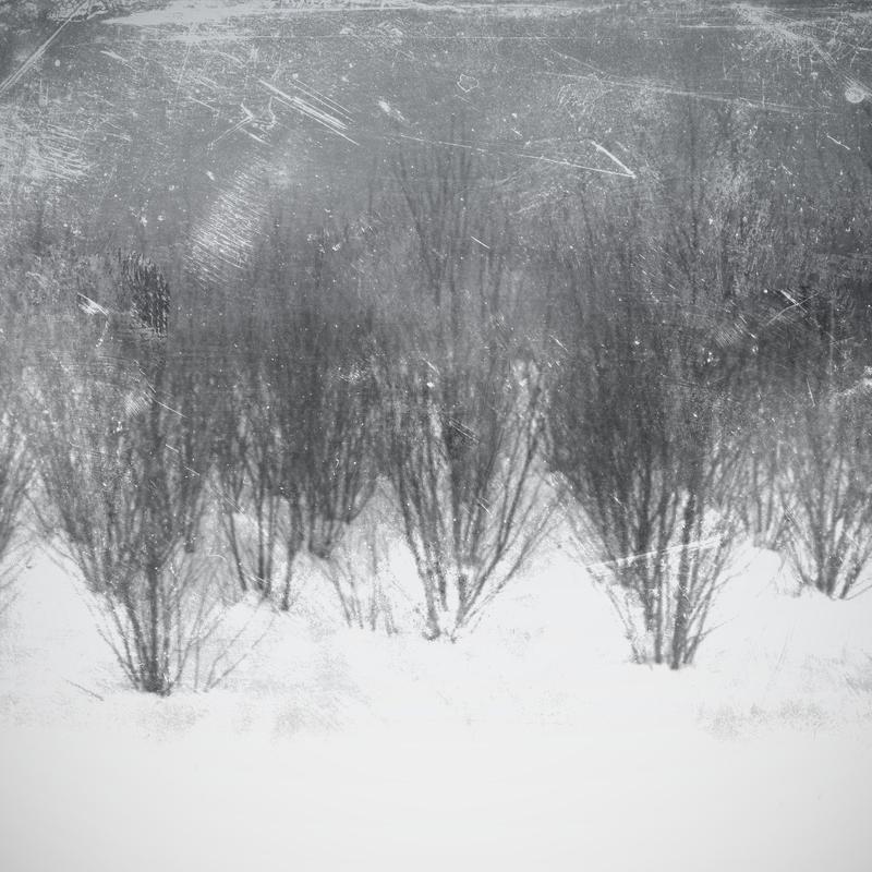 gray fields ::: by aopan