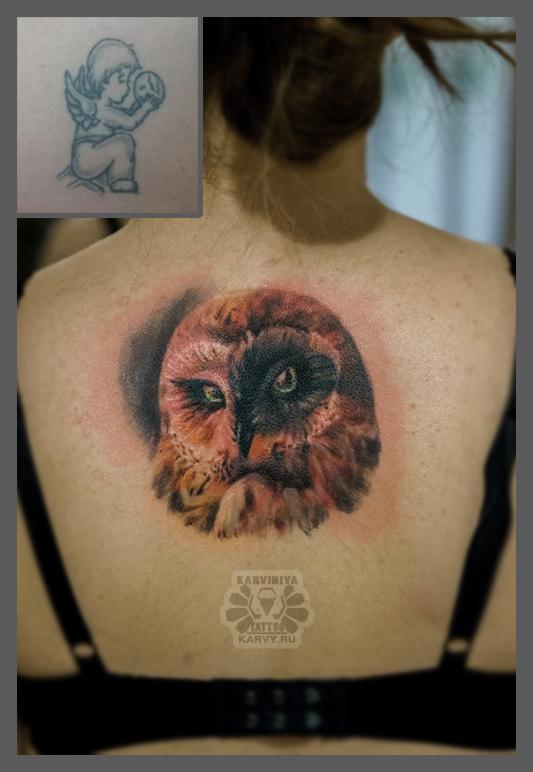 owl-cover by Karviniya