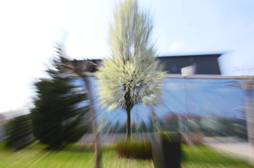 Tree appear in speed by Heuiin