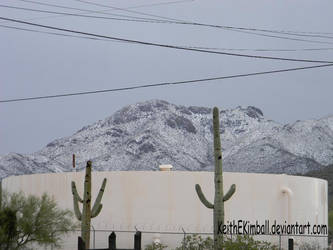 Snow in Tucson (Can You Believe It?)
