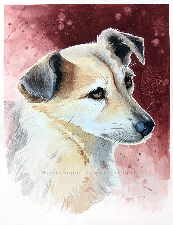 Prince pet portrait commission