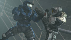 Halo - Hand to Hand