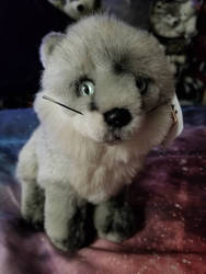 Arctic Fox Leosco Plush by sparkskull789