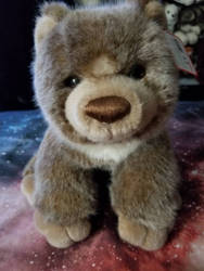 Gund Hunter Bear Plush by sparkskull789