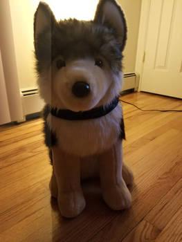 Leeloo Douglas Cuddle Toy Wolf Plush