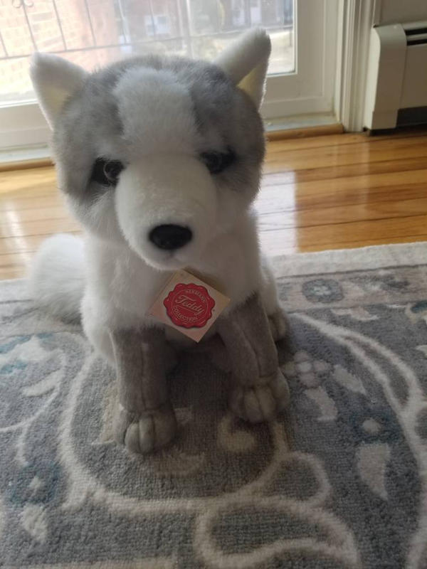 Arctic fox Teddy Hermann plush by sparkskull789
