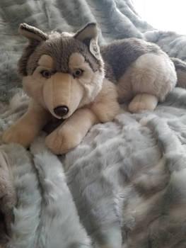 WWF Large Laying Wolf