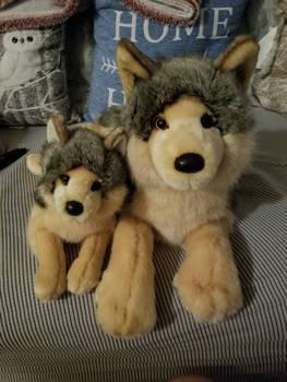 Douglas Niko and Alder Wolves